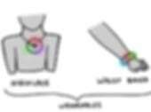 loop-wearable.png
