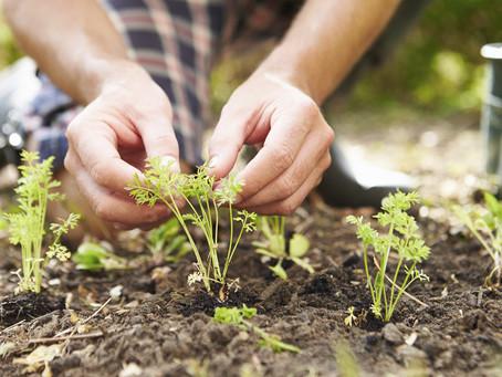 Top Three Tips to Being a Social Entrepreneur
