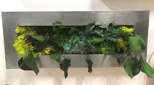 Mini moss - galvanized frame