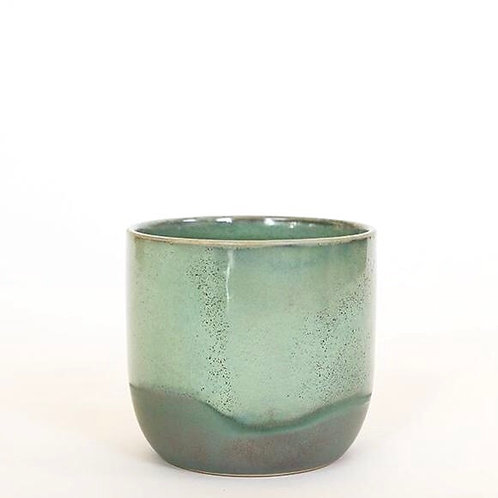 Green Caribe Pot