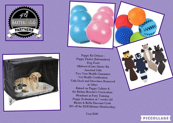 Puppy Deluxe Pack.jpg
