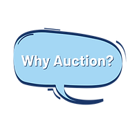 Why Auction Bubble.png