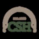 csh_logo_web_icon_clr.png