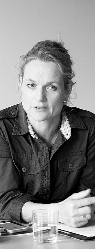 Viola von Cramon, Die Grünen, 2015