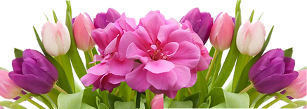 Easter-Tulips-Web(3).png