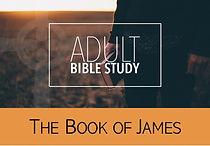 Bible Study-1-2021.jpg