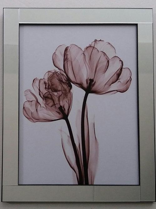 Quadro moldura espelhada Flor Tulipa