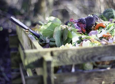Challenge Confinement : Faire Son Compost - Défi #1