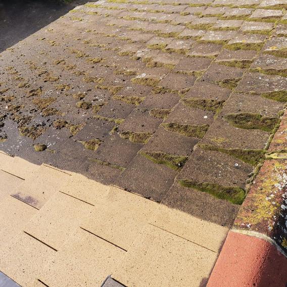 Roof Cleaning in Uxbridge.jpg