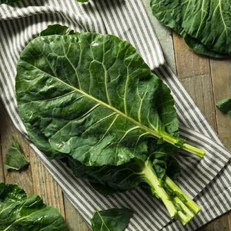 Dicas Super Fáceis e Infalíveis para Cultivar Couve-Folha