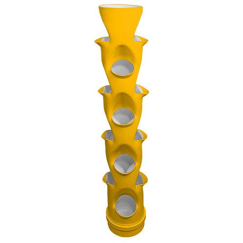 Dojô Yellow