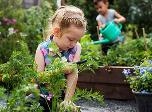 crianças-aprendem-como-plantar.jpg