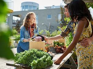 venda-de-vegetais-renda-extra.jpg