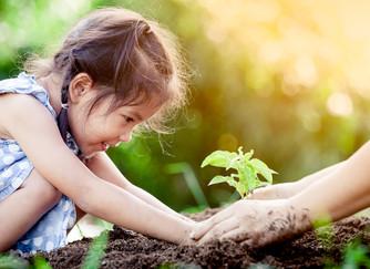 7 Benefícios de Educar as Crianças Através do Plantio!