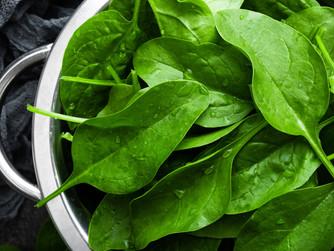 Saiba como Cultivar Espinafres Crocantes e Saborosos em Apenas 4 passos