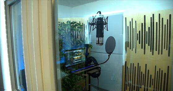 MP Studio.png