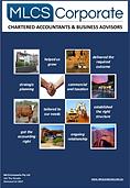 MLCS-Brochure cover.PNG
