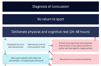 Concussioninsport-under18.png