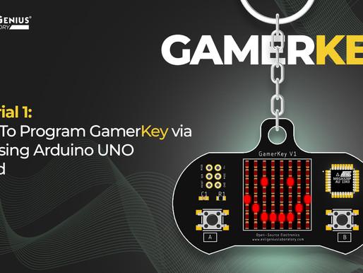 How to program GamerKey V1 via ISP