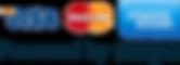 stripe_credit-card-logos.png