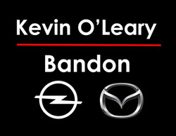 Kevin O'Leary Group