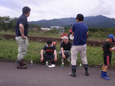 kosumosu3.JPG