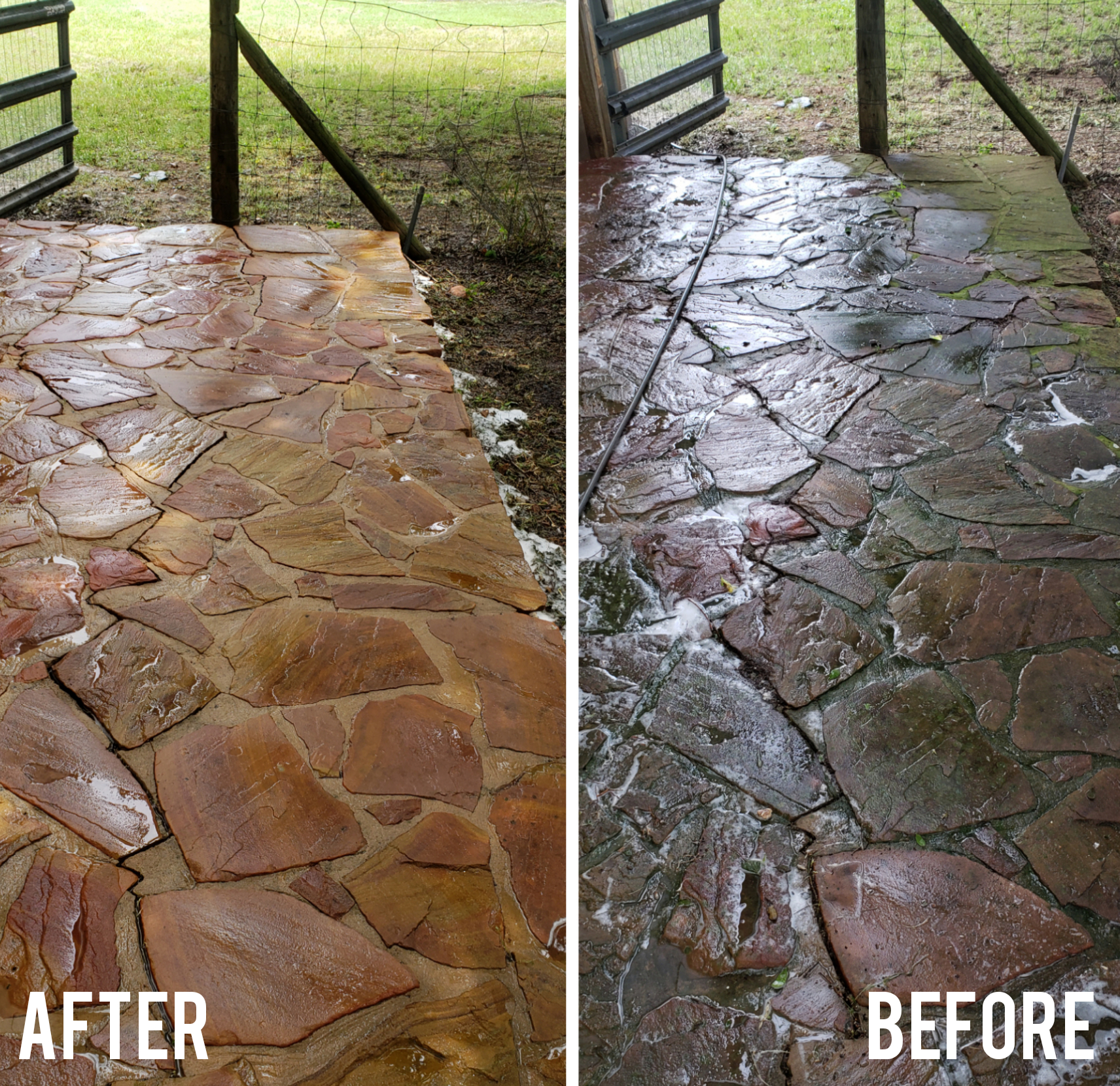 Pavers Clean Up