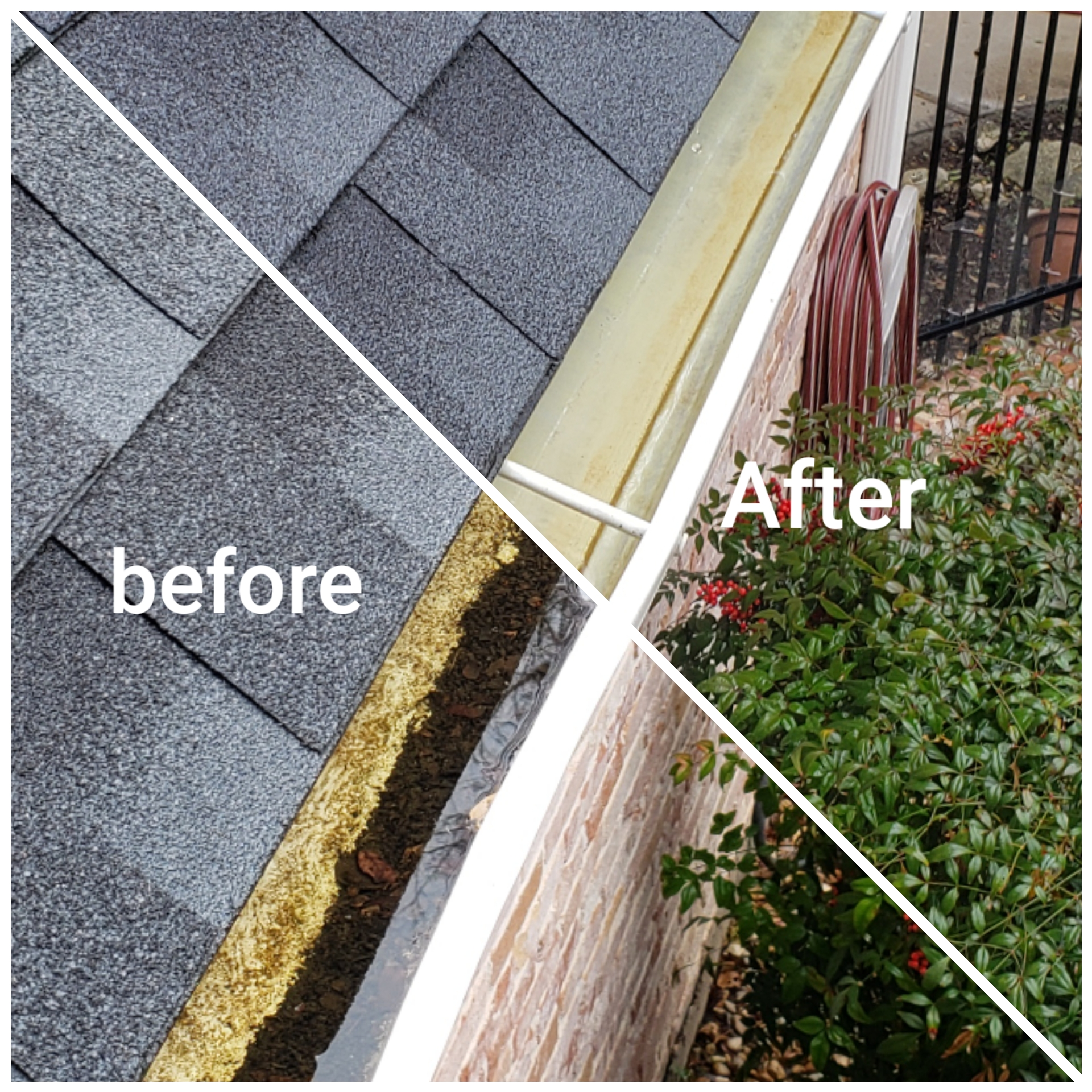 Gutter Before & After
