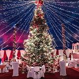 Weihnachtszirkus%20Waiblingen_edited.jpg