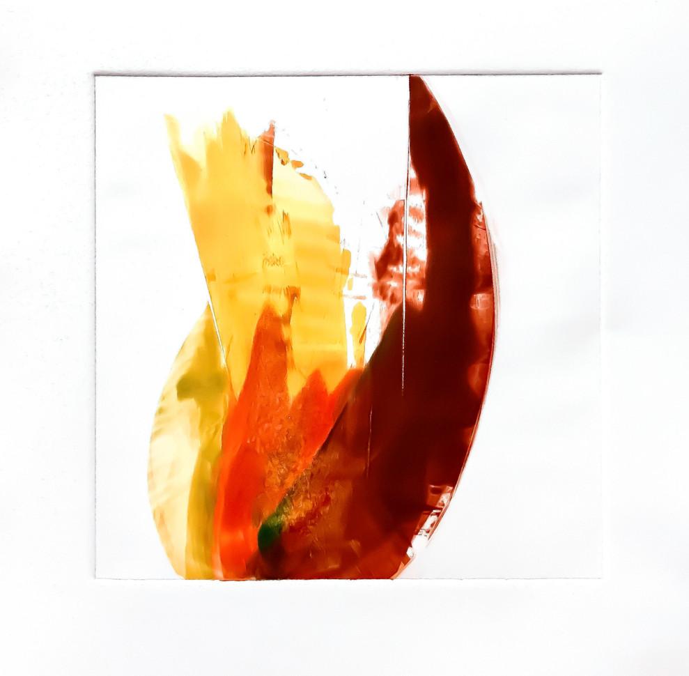 """Terra INfirma/Amazon Study II, monotype, 10"""" x 10"""""""