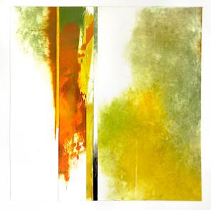 "Coronoa Collage 4, 10""x10"""