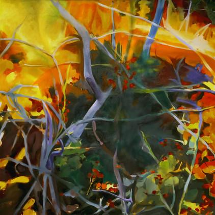 "Autumn brambles, oil on canvas, 36""x36"""