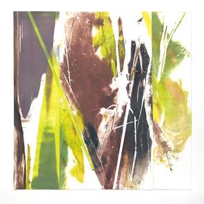 "Coronoa Collage 11, 10""x10"""