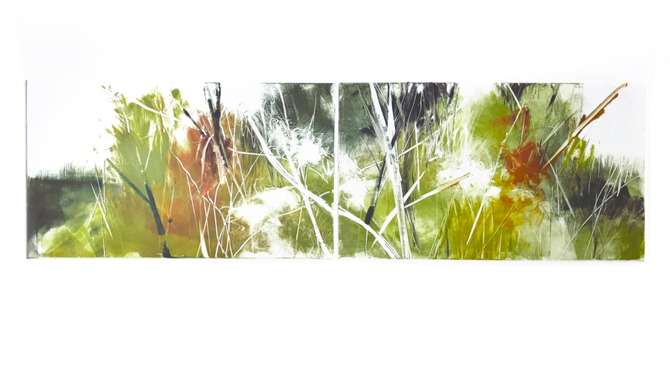 "Hedgerow dipytch II, 6"" x 21"" monotype on BFK Rives"