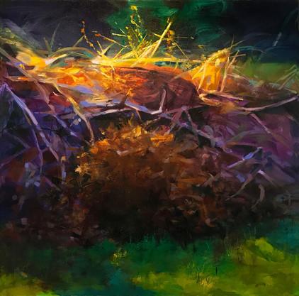 "brush pile, oil on canvas, 30"" x 30"""