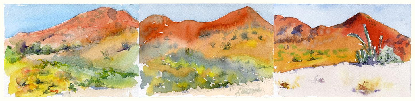 baja desert view