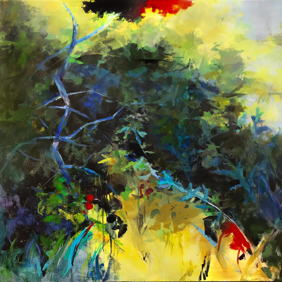 "wild garden, acrylic on canvas, 36"" x 36"""