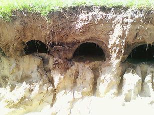 Graveless drain field