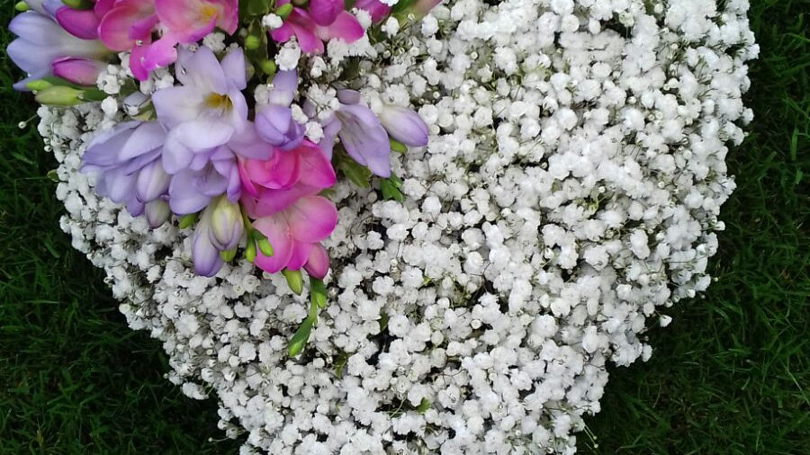 Gypsophila and Freesia Heart