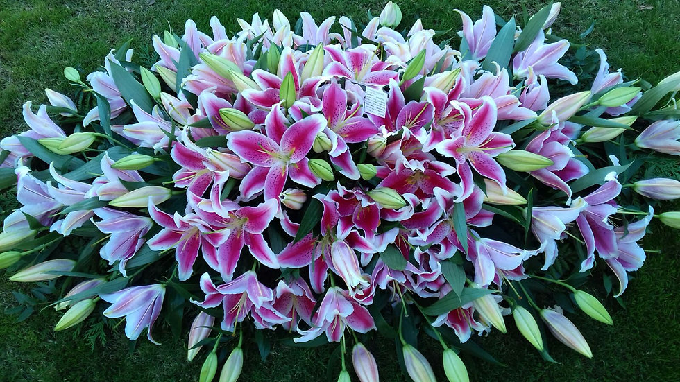 Oriental Pink Lilies Coffin Spray