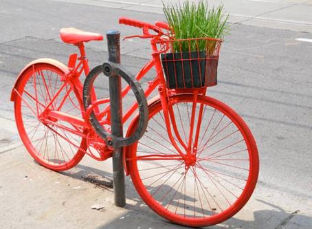 Kako su napušteni bicikli postali umjetničke instalacije