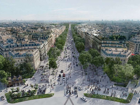 Više zelenila za otporan, ugodan i zdraviji grad