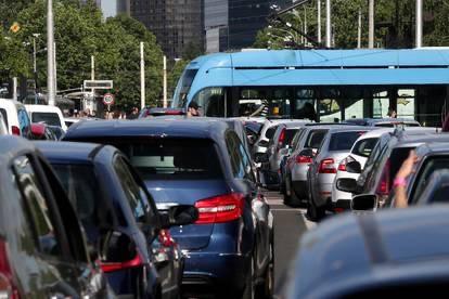 """""""Superbiljka"""" koja upija zagađeni zrak s prometnica"""