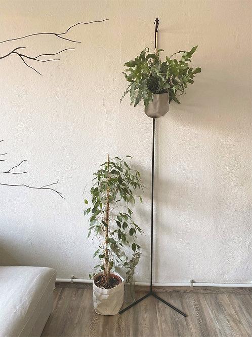 Appendi piante - Singolo
