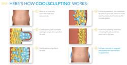 How-CoolSculpting-Works.jpg