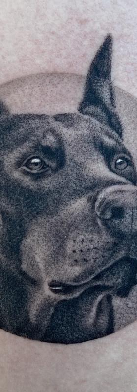 Dotwork Dog Portrait Tattoo Sydney Micro Detailed