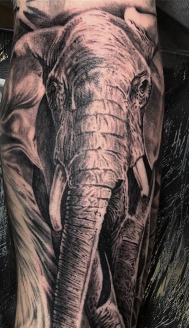 Realisitic elephant tattoo