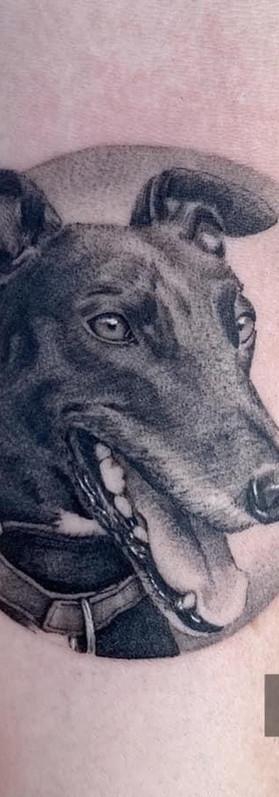 Micro detailed dog portrait tattoo sydney artist
