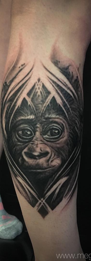 megan allard young gorilla