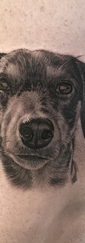 Micro detailed realistic dog portrait tattoo